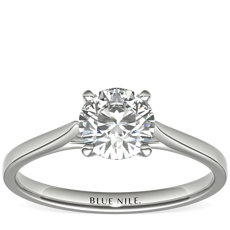 1 Carat Astor Petite Cathedral Solitaire in Platinum (F/VS2) Ready-to-Ship