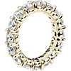 Vista lateral del anillo