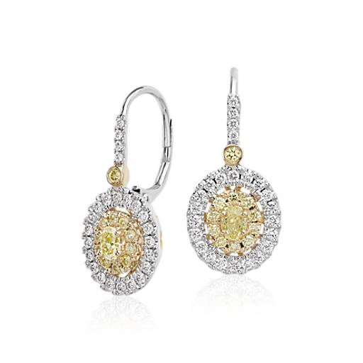 Double Halo Yellow And White Diamond Drop Earrings In 18k Gold 1 Ct Tw Blue Nile