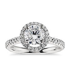 Floating Halo Diamond Engagement Ring in Platinum (1/3 ct. tw.)
