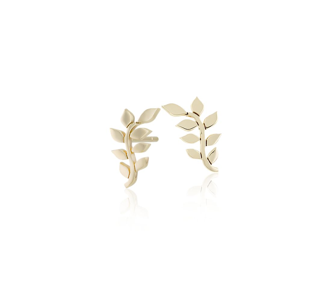 Leaf Stud Earrings in 14k Yellow Gold