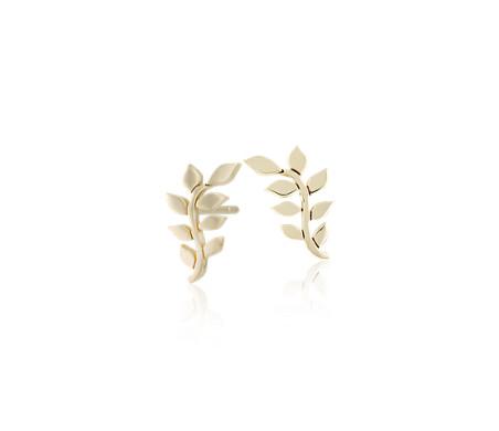 Leaf Stud Earrings in 14k Yellow Gold