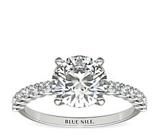Petite Luna Diamond Engagement Ring in 14k White Gold (0.31 ct. tw.)
