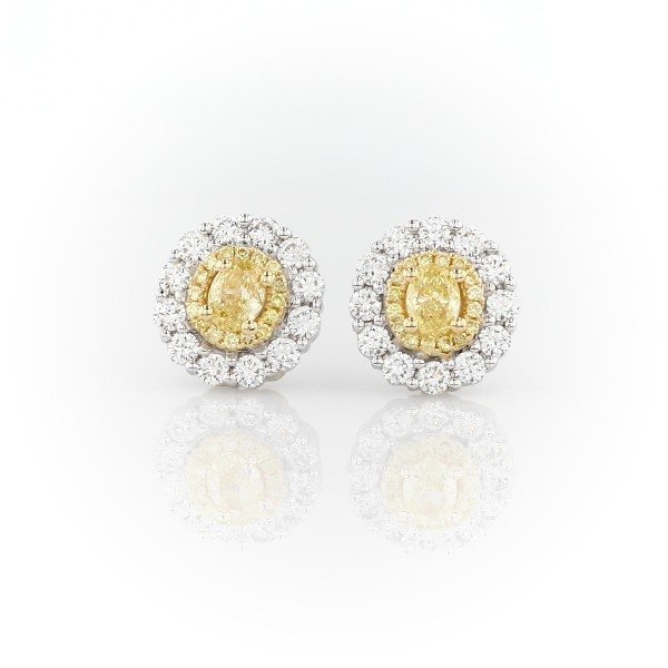 e6c73a95e8be6 Double Halo Yellow and White Diamond Stud Earrings in 18k Yellow and White  Gold (1 1/2 ct. tw.) | Blue Nile