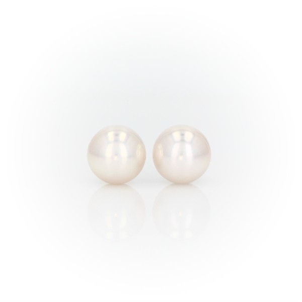 Premier Akoya Cultured Pearl Stud Earrings in 18k White Gold (8.0-8.5mm)