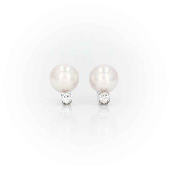 Premier Akoya Cultured Pearl and Diamond Stud Earrings in 18k White Gold (7.0-7.5mm)