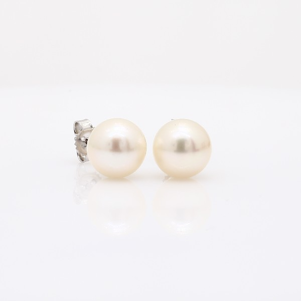 Blue Nile Classic Akoya Cultured Pearl Stud Earrings in 18k Yellow Gold (8.0-8.5mm) pTy7Jzmp